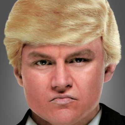 ​ Donald Trump blonde Perücke